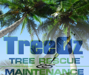 Tree Oz Tree Rescue